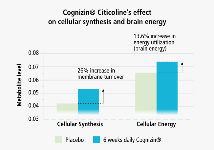 How Cognizin in Performance Lab Mind works