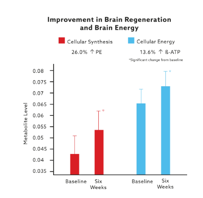 How MindLab Pro works in Improving Brain Regeneration and Brain Energy