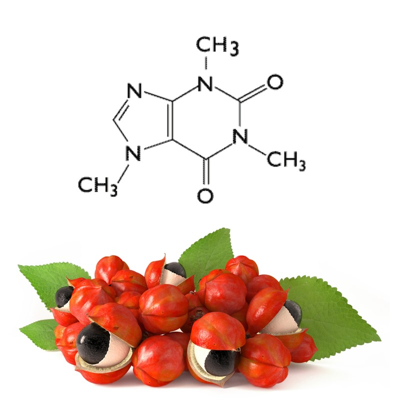 Nitrovit Ingredients: Guarana Powder