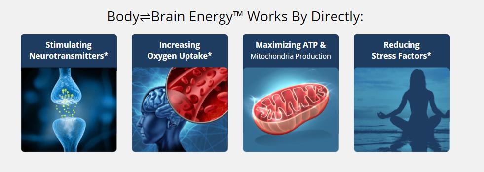 Ways in which HFL's Body Brain Energy work