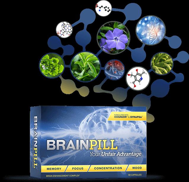 Brain Pill Ingredients