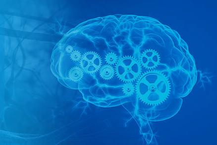 Sharp Brain Functions